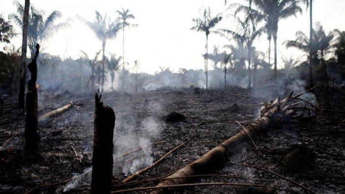 Amazònia: cal parar la ferotgia predatòria de Bolsonaro i els capitalistes